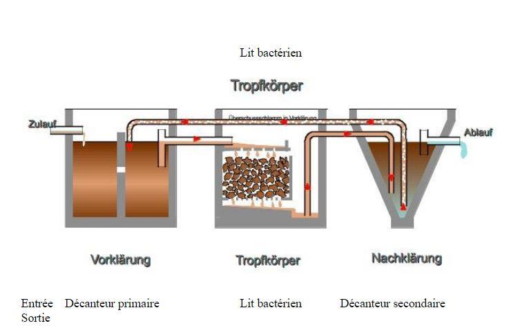 Explications du lit bactérien dans la micro-station d'épuration ATB France