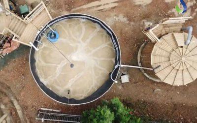Station d'épuration dans une cuve en bois – restaurant polynésien
